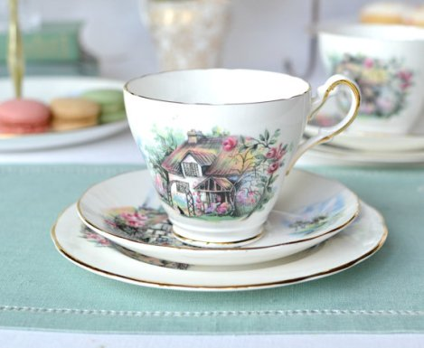 Duchess Brookfield tea cup